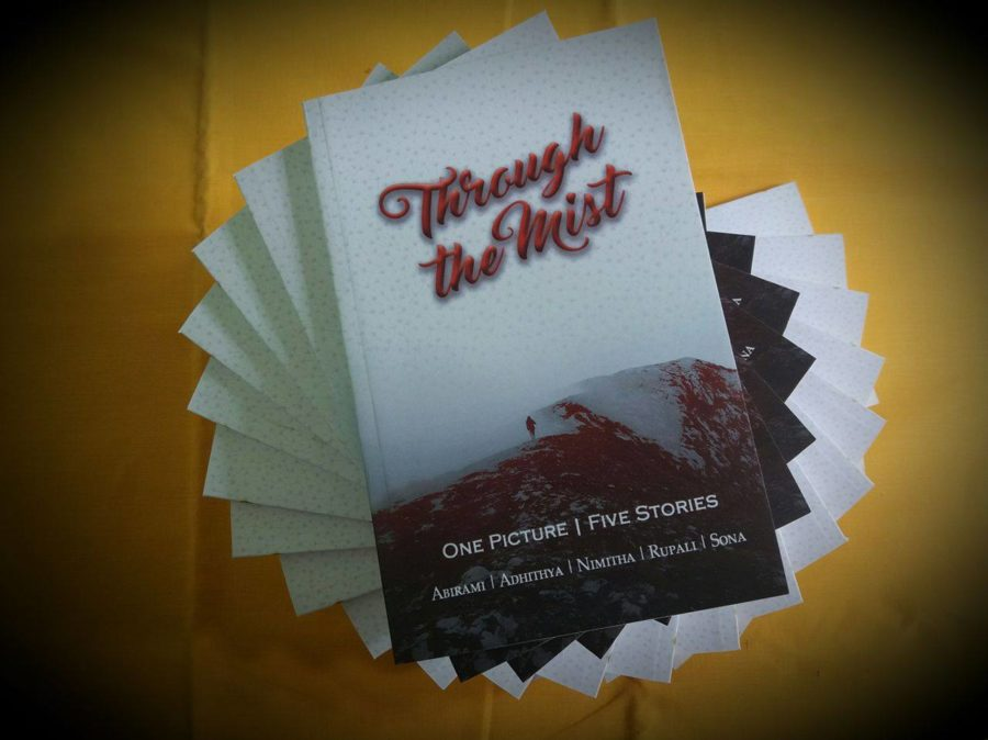 through the mist paperback